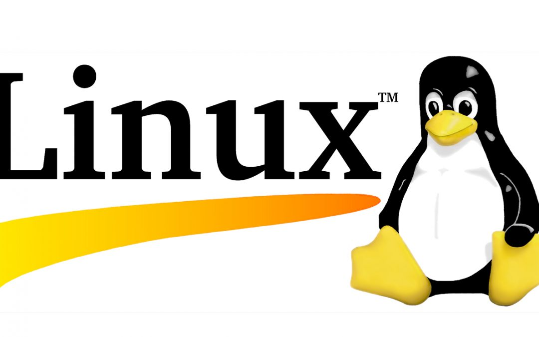 How does Linux kernel decide which process to kill when there is no memory left on the system?